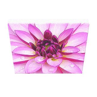 After The Rain Purple Dahlia Canvas Print
