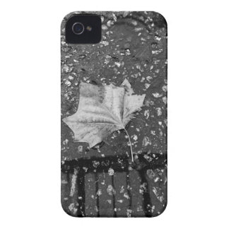 After the Rain Storm iPhone 4 Case-Mate Cases