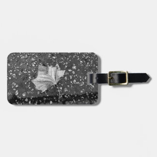 After the Rain Storm Luggage Tag