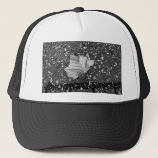 After the Rain Storm Trucker Hat