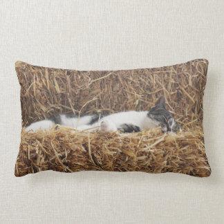 Afternoon Cat Nap Lumbar Pillow