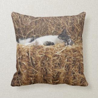 Afternoon Cat Nap Throw Pillow