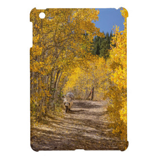 Afternoon Drive Cover For The iPad Mini