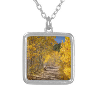 Afternoon Drive Silver Plated Necklace