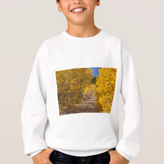 Afternoon Drive Sweatshirt