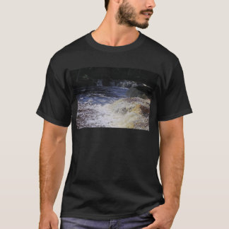 Afternoon Enchantment T-Shirt