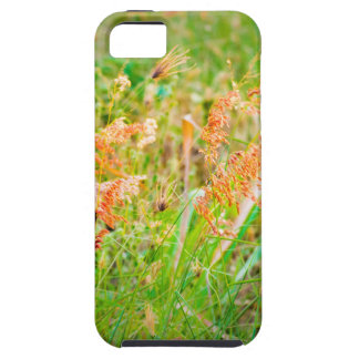 Afternoon Floral Scene Photo Case For The iPhone 5