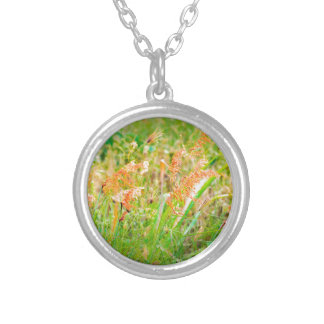 Afternoon Floral Scene Photo Silver Plated Necklace