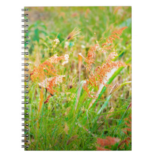 Afternoon Floral Scene Photo Spiral Notebook