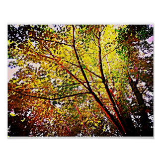 Afternoon Leaves Posters