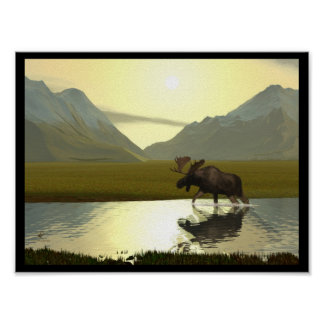 Afternoon Moose Poster