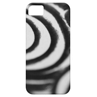 AfterNuno Case For The iPhone 5