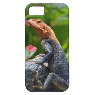 Agama - The Rainbow Lizard Tough iPhone 5 Case