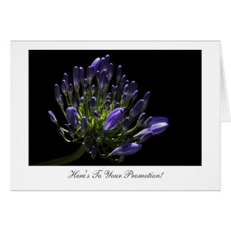 Agapanthus - Congratulations on Your Promotion Card