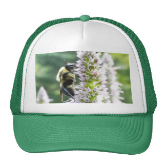 Agastache Flowers With Bumblebee Mesh Hat