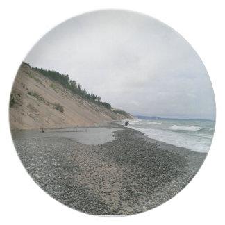 Agate beach 2 dinner plate