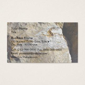 Agatified bark in limestone