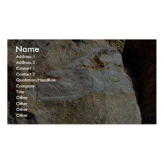 Agatified Bark In Limestone At Wanneroo Beach Pack Of Standard Business Cards