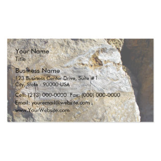 Agatified bark in limestone pack of standard business cards