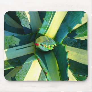 Agave Americana by Amy Vangsgard Mouse Pad