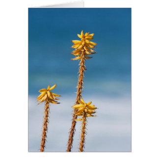 Agave and Ocean Card