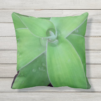 Agave and Raindrops Outdoor Cushion