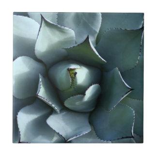 agave blue ceramic tile