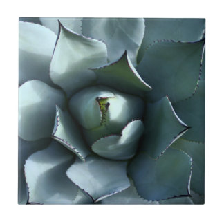 agave blue small square tile