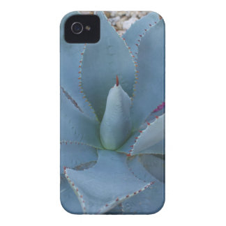 Agave iPhone 4 Case