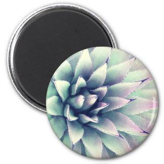 Agave Plant Magnet