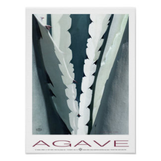 Agave Plume Plumb Poster