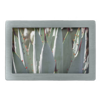 Agave Spikes Belt Buckles