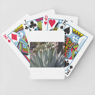Agave Spikes Bicycle Playing Cards