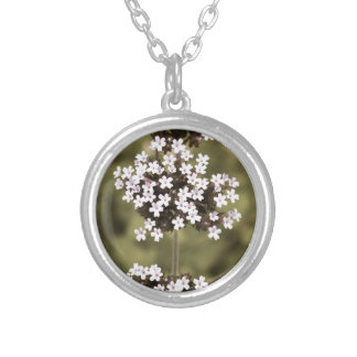 aged14 silver plated necklace