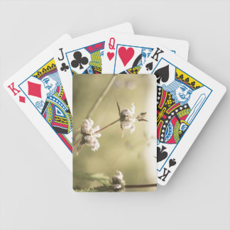 aged9 bicycle playing cards