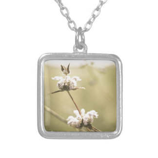 aged9 silver plated necklace