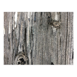 Aged wood fence posting from rustic bush setting postcard