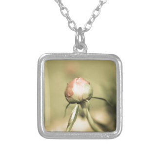 agedbulb silver plated necklace