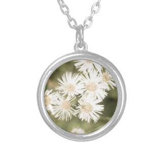 ageddaisies silver plated necklace
