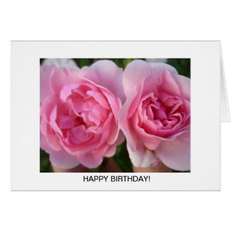 Aggelikis Two Deep Pink Roses Greeting Card