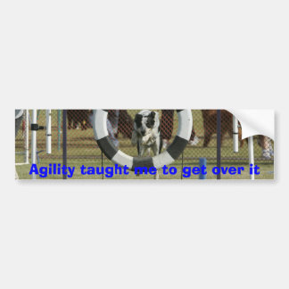 Agility taught me to get over it bumper sticker