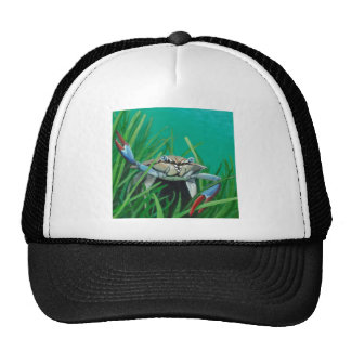 Ahoy There Meet The Under Water Sea Crab Cap