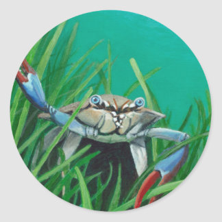 Ahoy There Meet The Under Water Sea Crab Classic Round Sticker