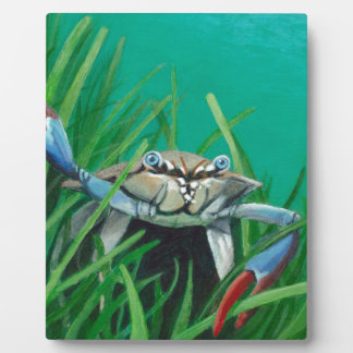 Ahoy There Meet The Under Water Sea Crab Plaque