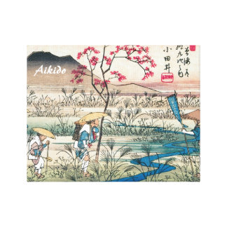 Aikido Japanese Martial Art Gallery Wrap Canvas