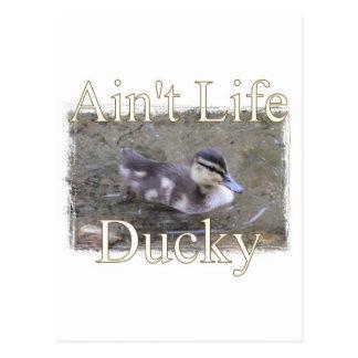 Ain't Life Ducky Postcard
