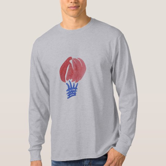 Air Balloon Men's Basic Long Sleeve T-Shirt