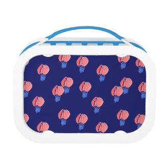Air Balloons Lunch Box