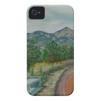 Air Force Academy Case-Mate iPhone 4 Cases