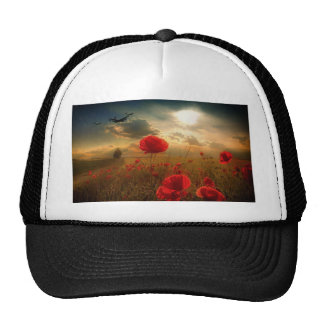 Air Force Tribute Cap